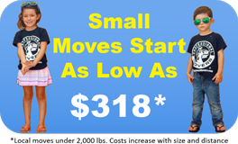 Professional Movers - Small Moves